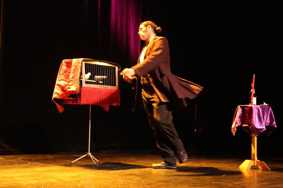 raoul-et-maurice-lightbox-IMG_6317